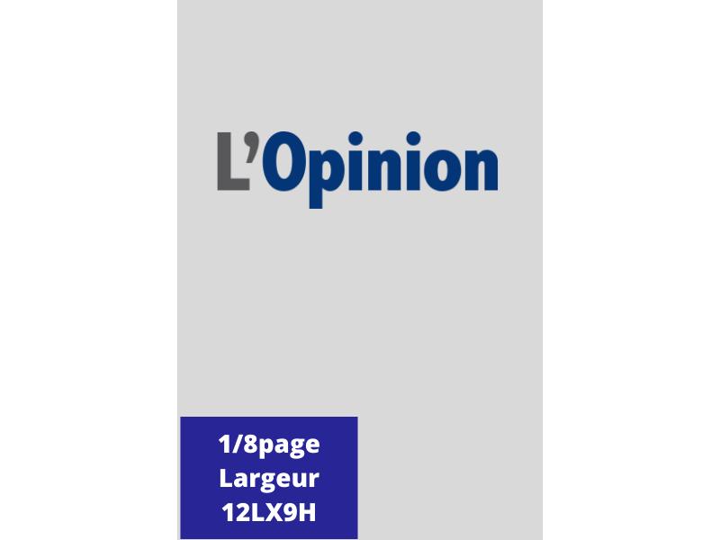Annonces Administratives et Légales 1/8 Page en Largeur journal L'Opinion